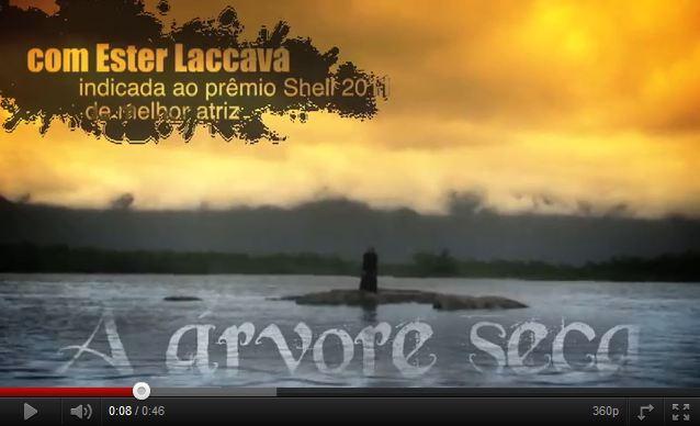 2011.10.06A_arvore_seca