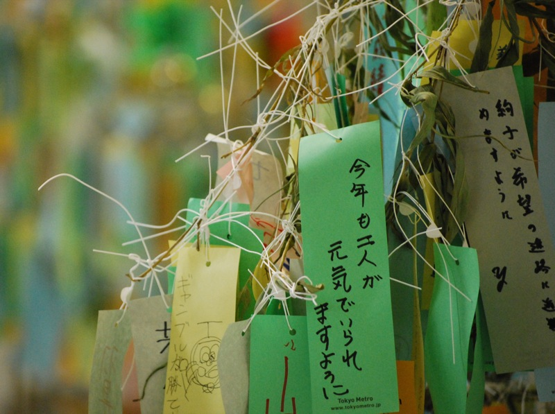 star_festival_tanabata_wishes-761271